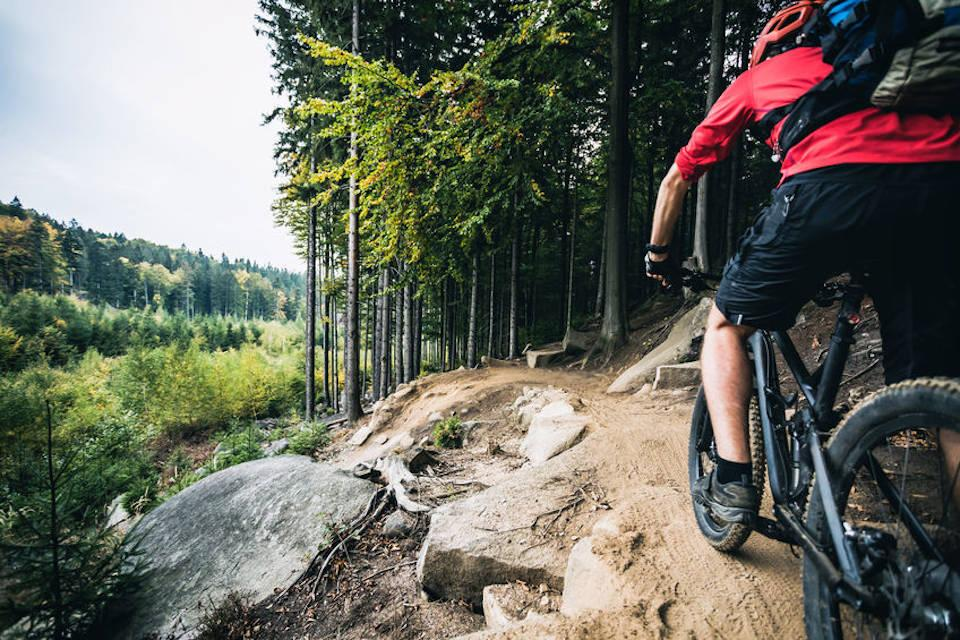 Cycling: The lower Wye Valley is a great place for cycling, both on and off road.  You can choose from easy or challenging routes and ride through some of the finest scenery in Britain.